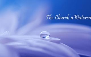 Sermon: 1 Corinthians 3: 1 – 9