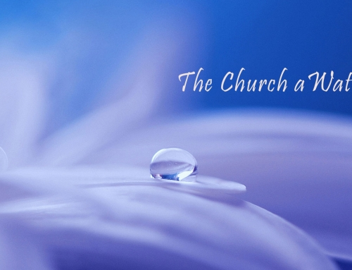 THE CHURCH A WATERED GARDENSermon Series: 1 Corinthians, Part 3